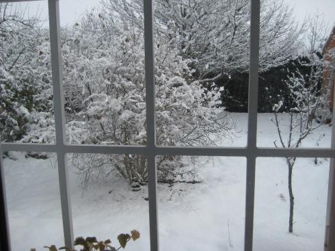 Neveda desde la ventana en El Jardín de Pepe Plana