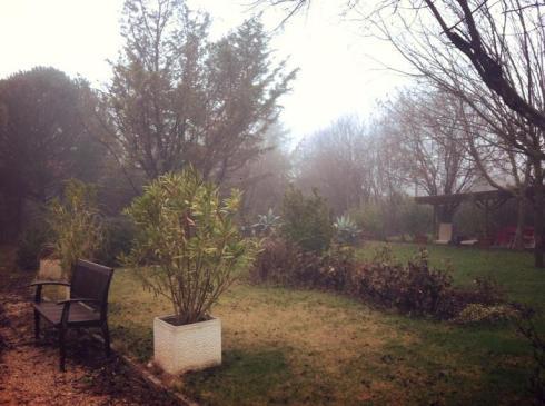 Niebla en el jardin de Pepe Plana